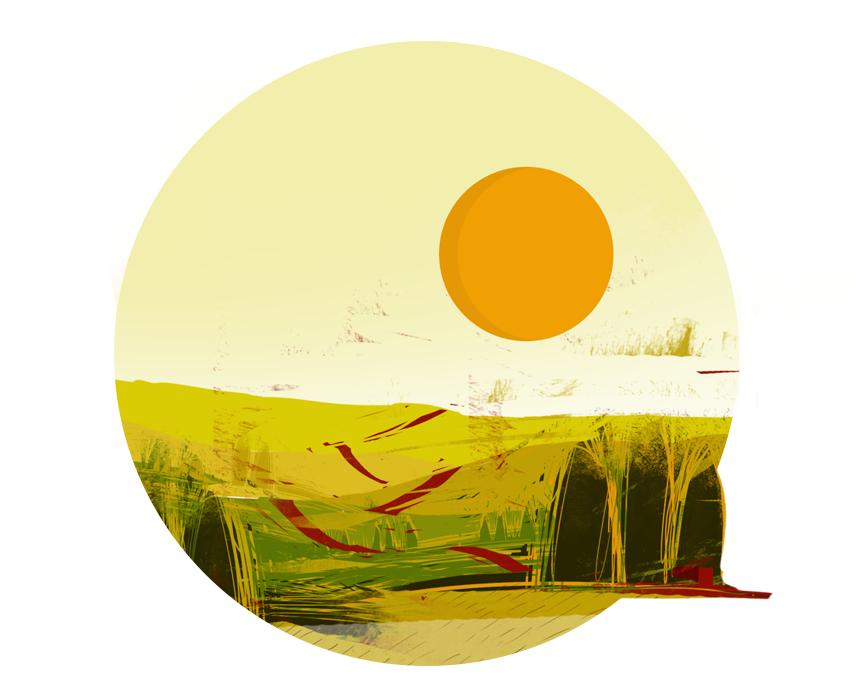 Krajobraz pól przy zachodzie słońca