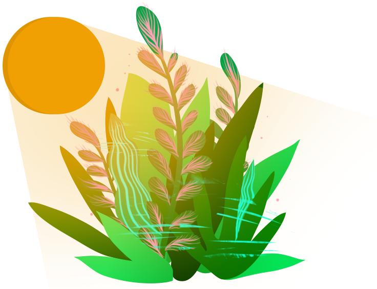 Zdjęcie roślin na tle słońca